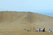 砂丘ウオークの写真10